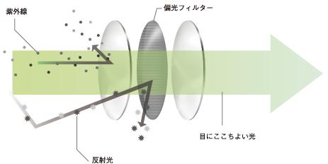 TALEXレンズの構造